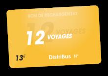 Carte 12 voyages (13 €)