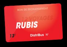Carte Senior 12 voyages (13 €)